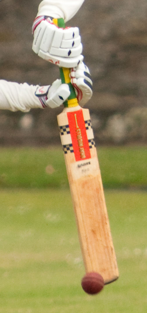 cricketerhitting-web